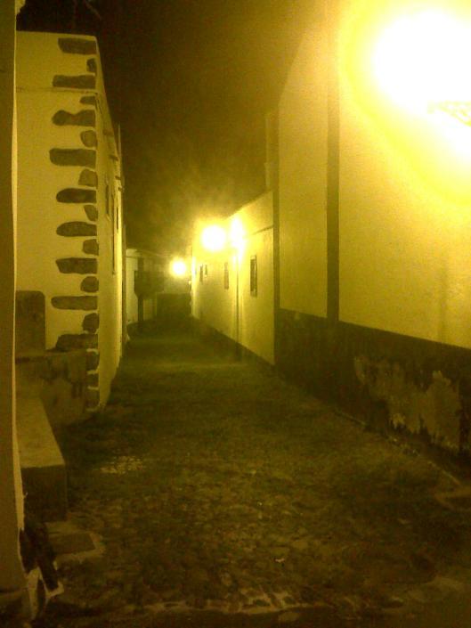 Guía de Isora-20140302-01601